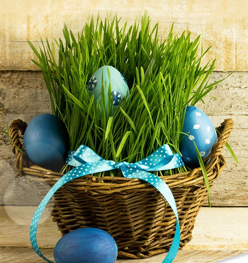 Wesołych Świąt Wielkanocnych! - OCRK